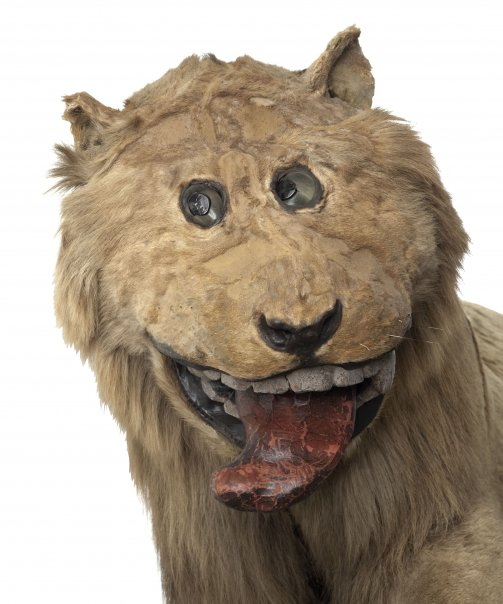 lejon-slott1.jpg