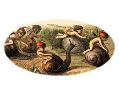 Richard Doyle Snail Race
