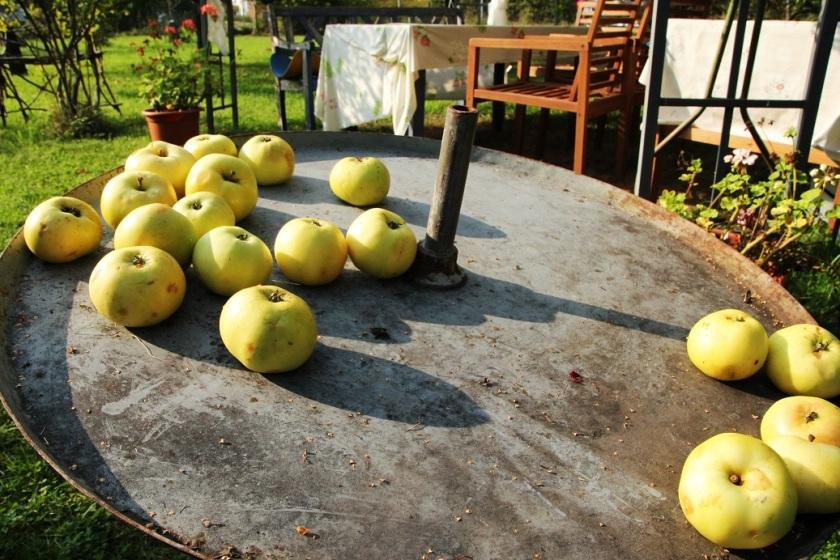 päpplen