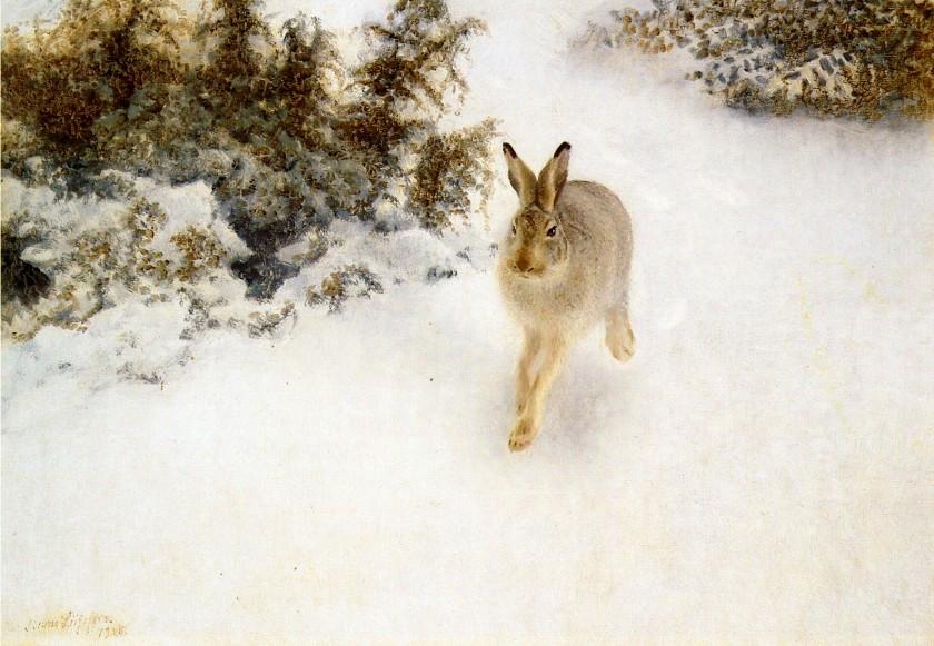 Bruno_Liljefors_-_Vinter_Hare 1908