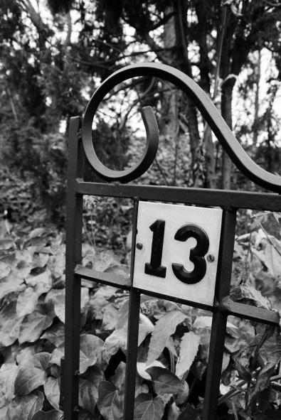 Nr 13